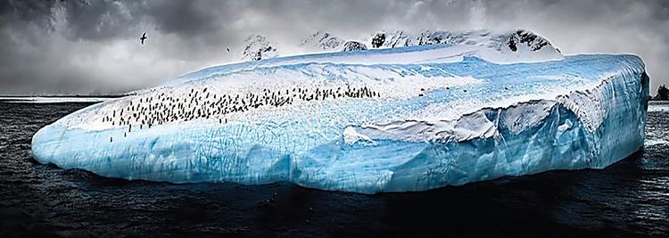 der italienische fotograf hat sch nheit der antarktis in einer reihe von faszinierenden bildern. Black Bedroom Furniture Sets. Home Design Ideas