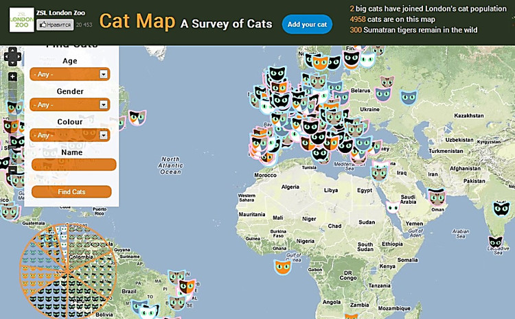 Cat Map Of The World.On The Internet There Was A Cat S World Map