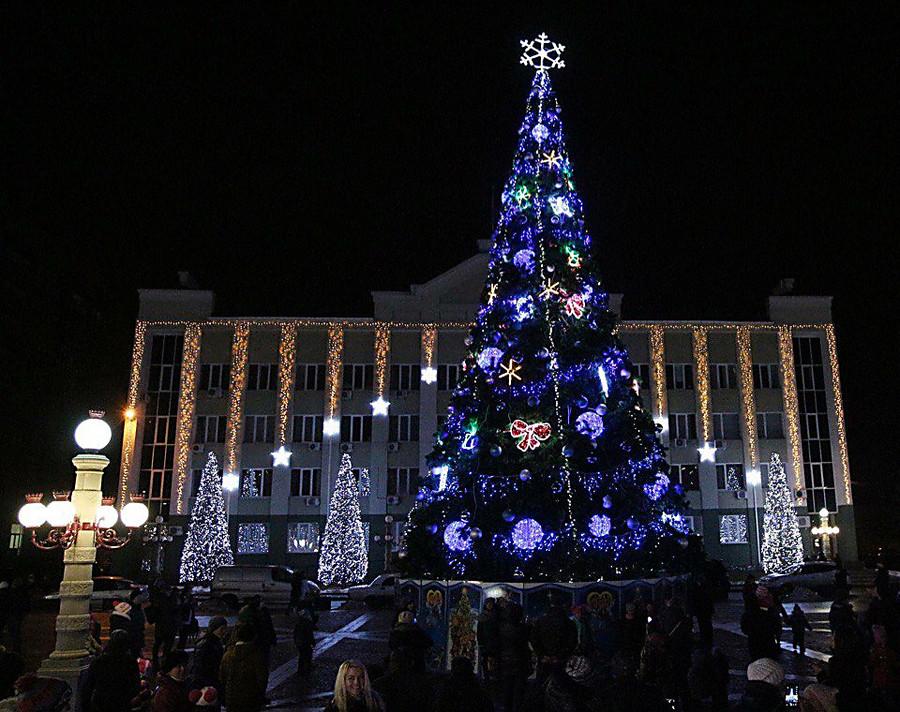 Репортеры показали самую дорогую елку вУкраинском государстве