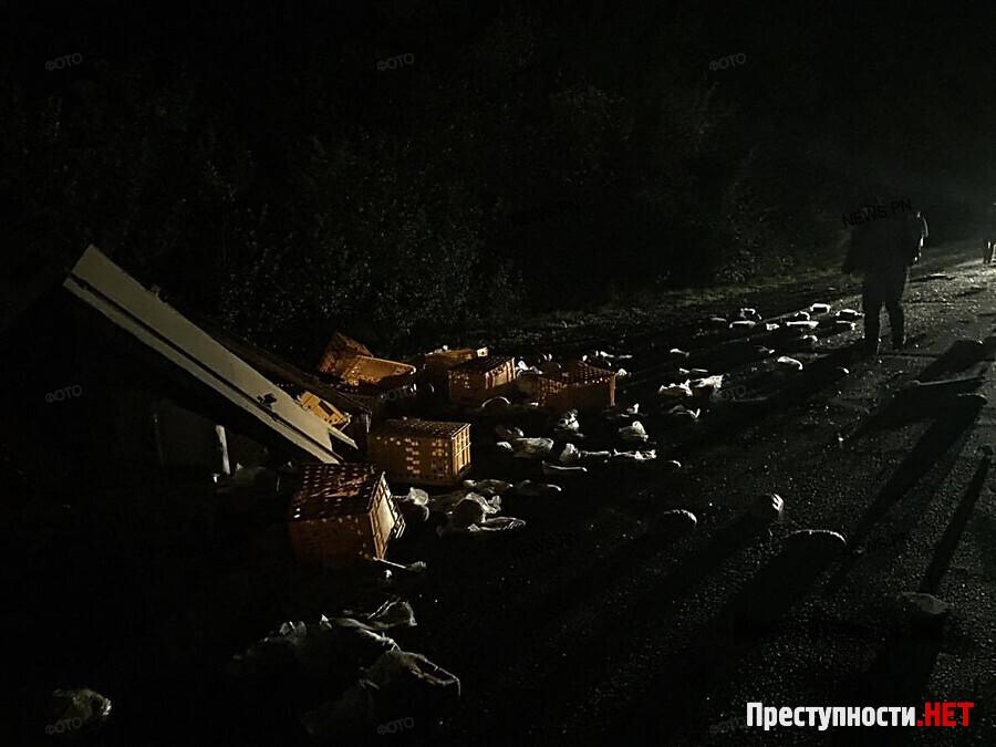 Под Николаевом после тарана с грузовым автомобилем умер шофёр микроавтобуса