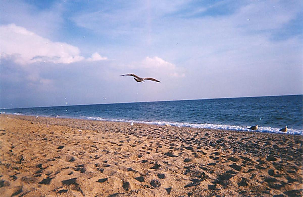 Надписью так, картинки евпатории в крыму море