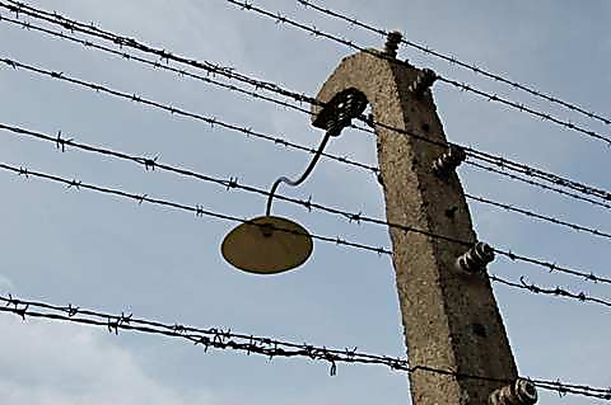 Barbed wire: mankind history – improvement of fences!