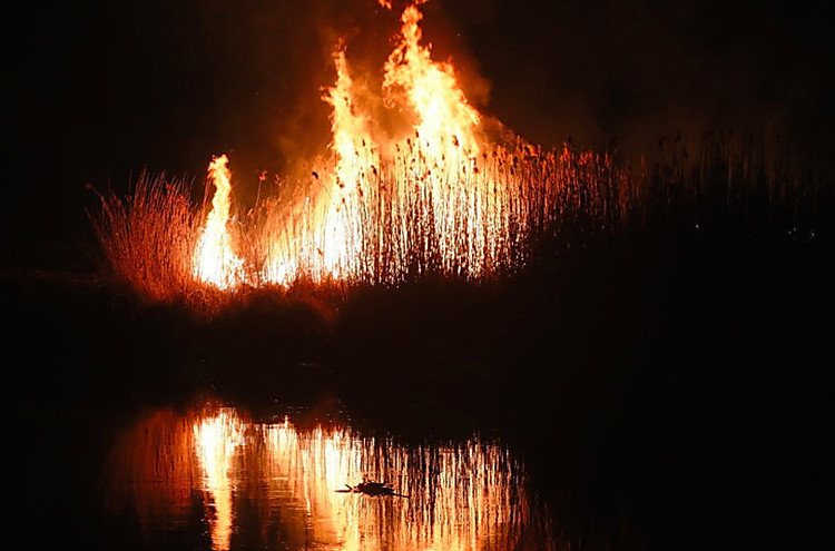 Картинки стран огня