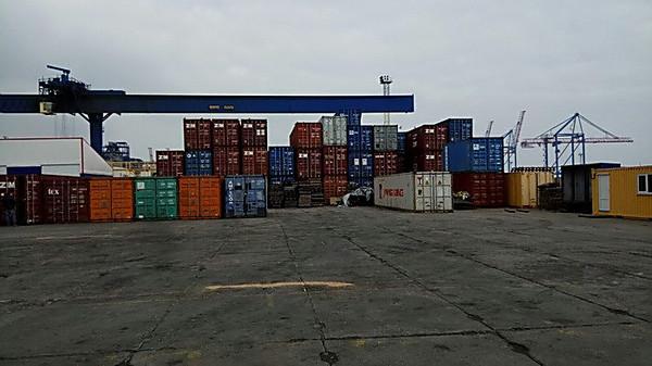 В Одесском морпорту СБУ совместно с прокуратурой разоблачили канал незаконного экспорта древесины в Европу