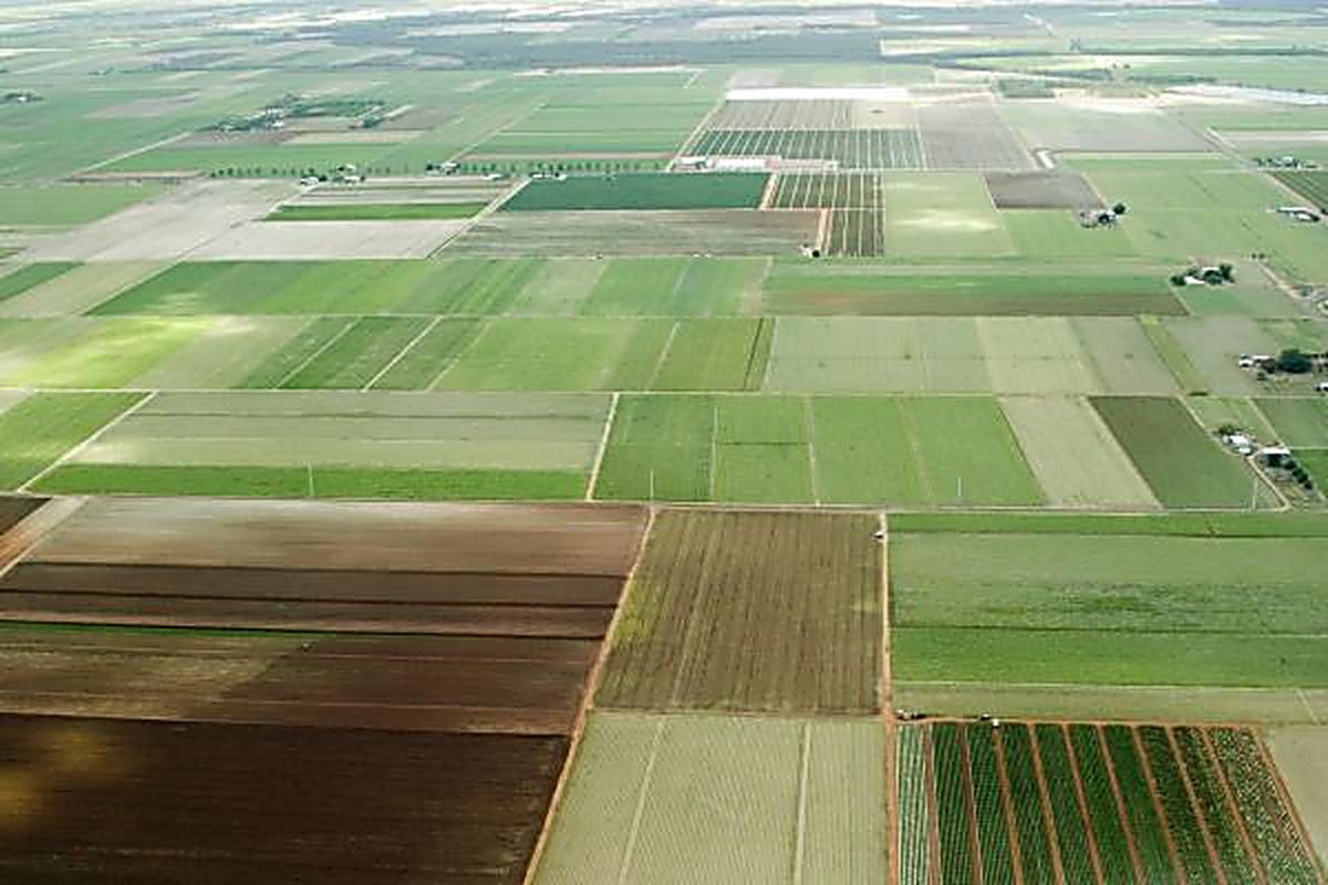 В испании можно арендовать землю