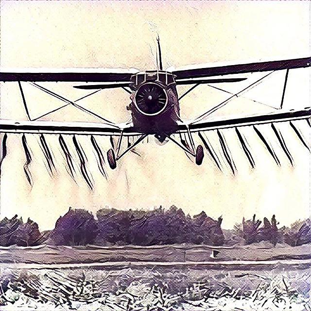 Ан-2 покорил Книгу рекордов Гиннеса
