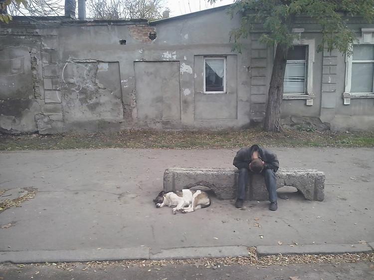 В городе Николаеве по оценкам