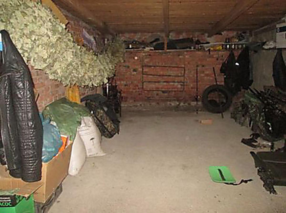 проститутки в первомайске николаевской
